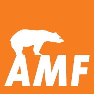Knauf AMF DONN Wandwinkel MIE24